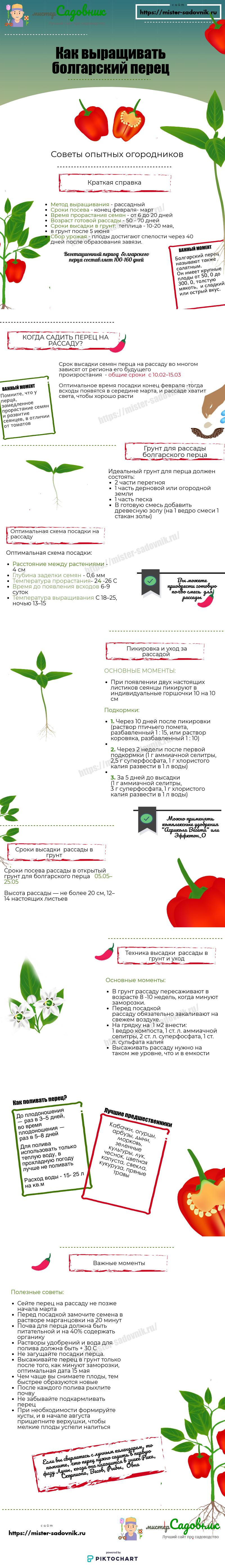 как выращивать перец своими руками