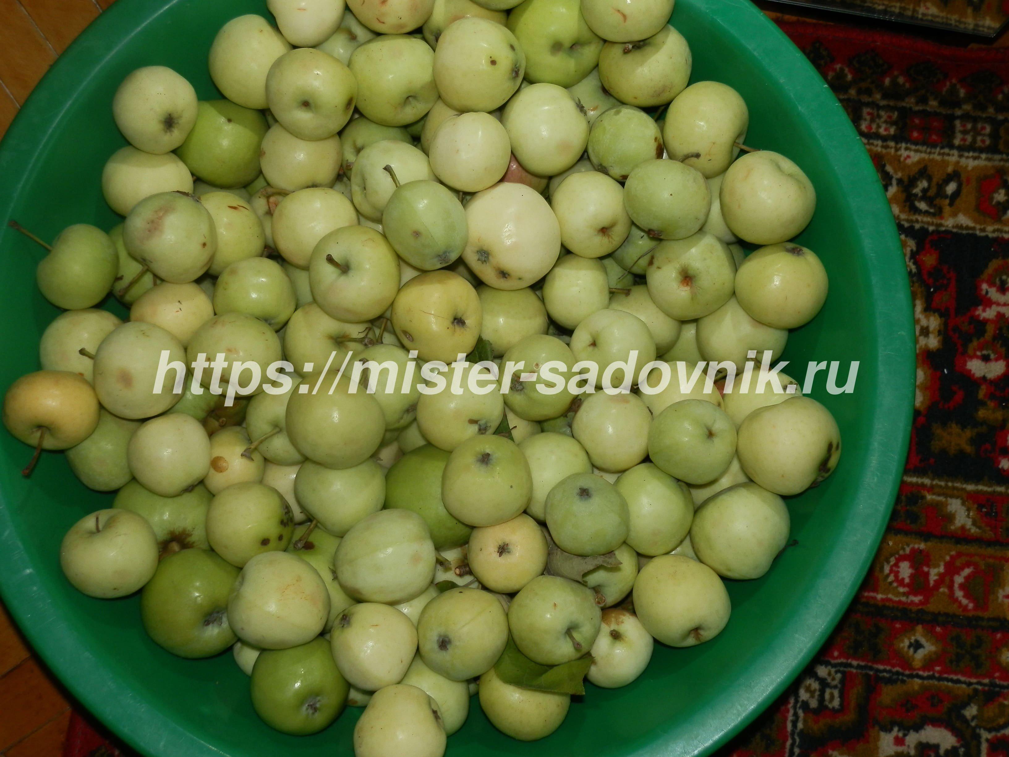 компот из яблок на зиму в 1, 5 литровые банки